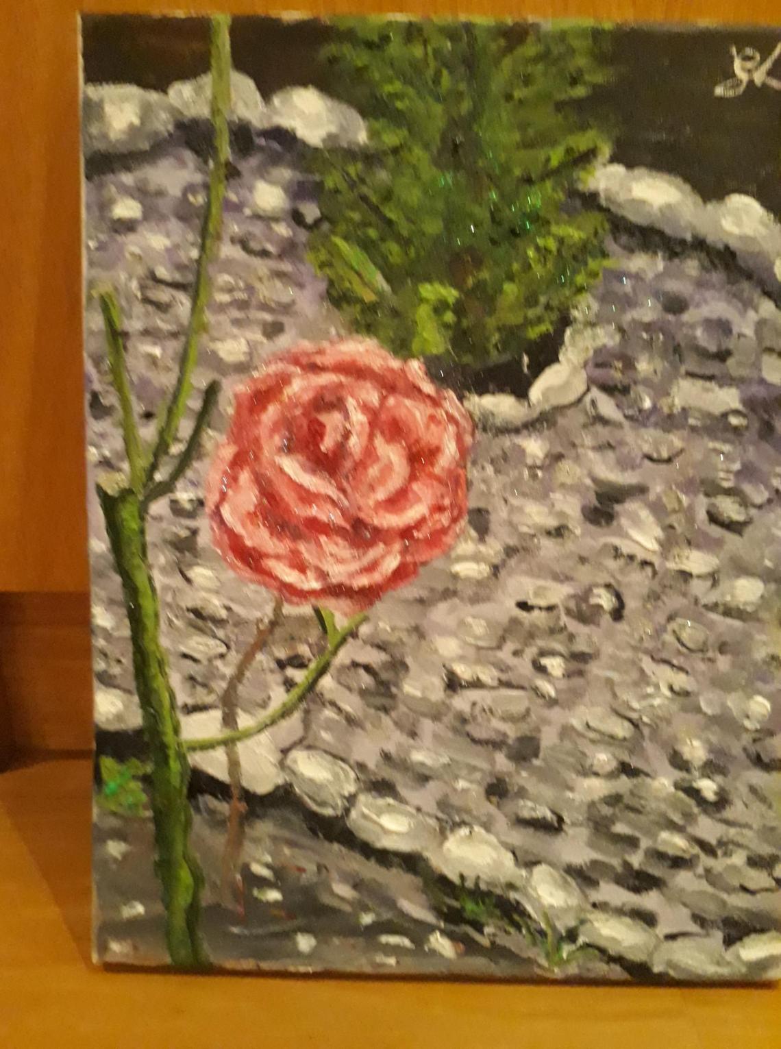 rose 3 feb